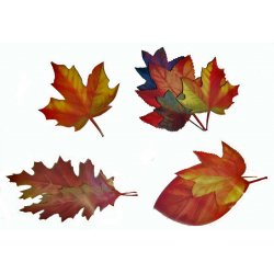 Giant Leaf Shaped Cutouts - 4 Pack